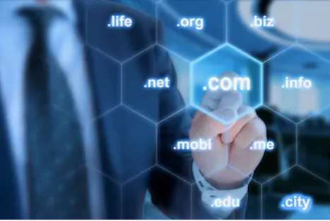 Types of domains hosted at Google domain hosting
